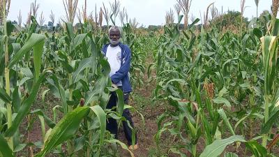Informelle Arbeit in Afrika weit verbreitet