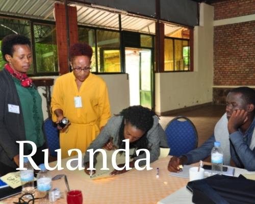Stay Alliance Ruanda